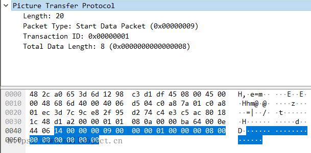 PTP-IP StartDataPacket数据包示例